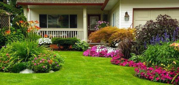landscaped garden with seasonal flowers